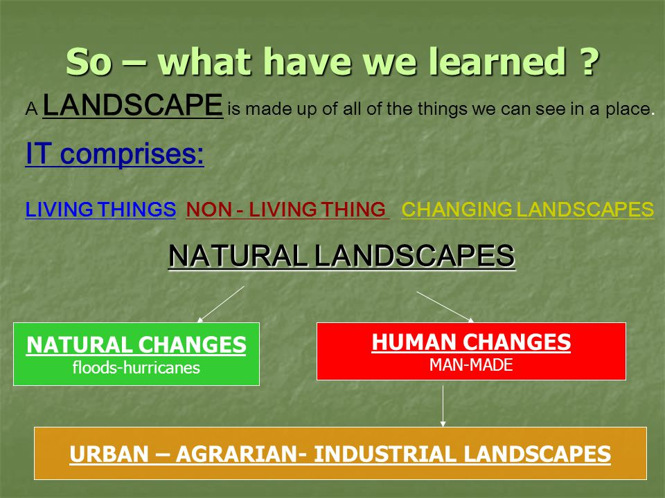 So – what have we learned . A LANDSCAPE is made up of all of the things we can see in a place.