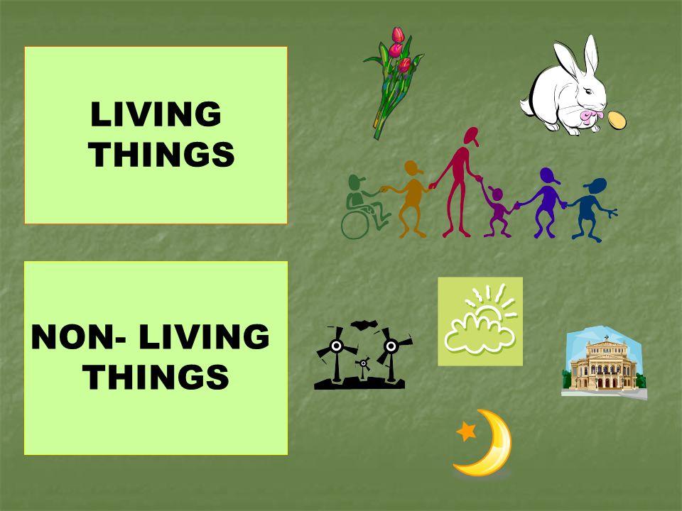 LIVING THINGS NON- LIVING THINGS