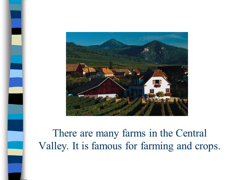 There are many farms in the Central Valley. It is famous for farming and crops.