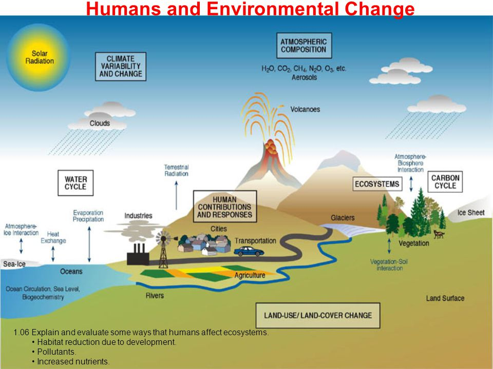 Humans and Environmental Change 1.06 Explain and evaluate some ways that humans affect ecosystems. Habitat reduction due to development. Pollutants. I