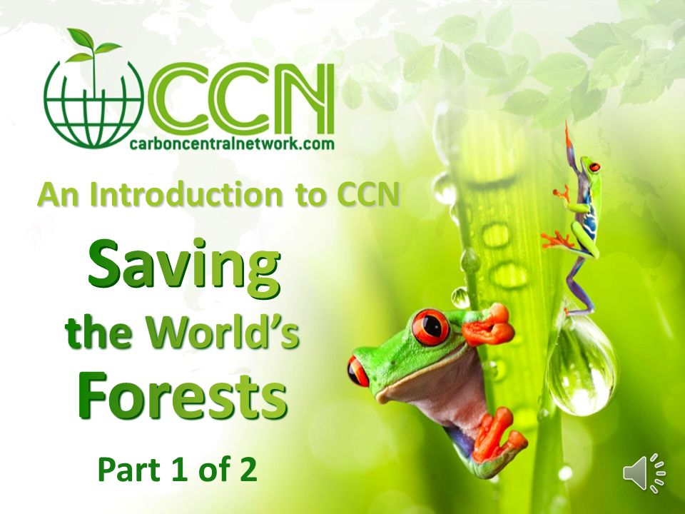 An Introduction to CCN Part 1 of 2