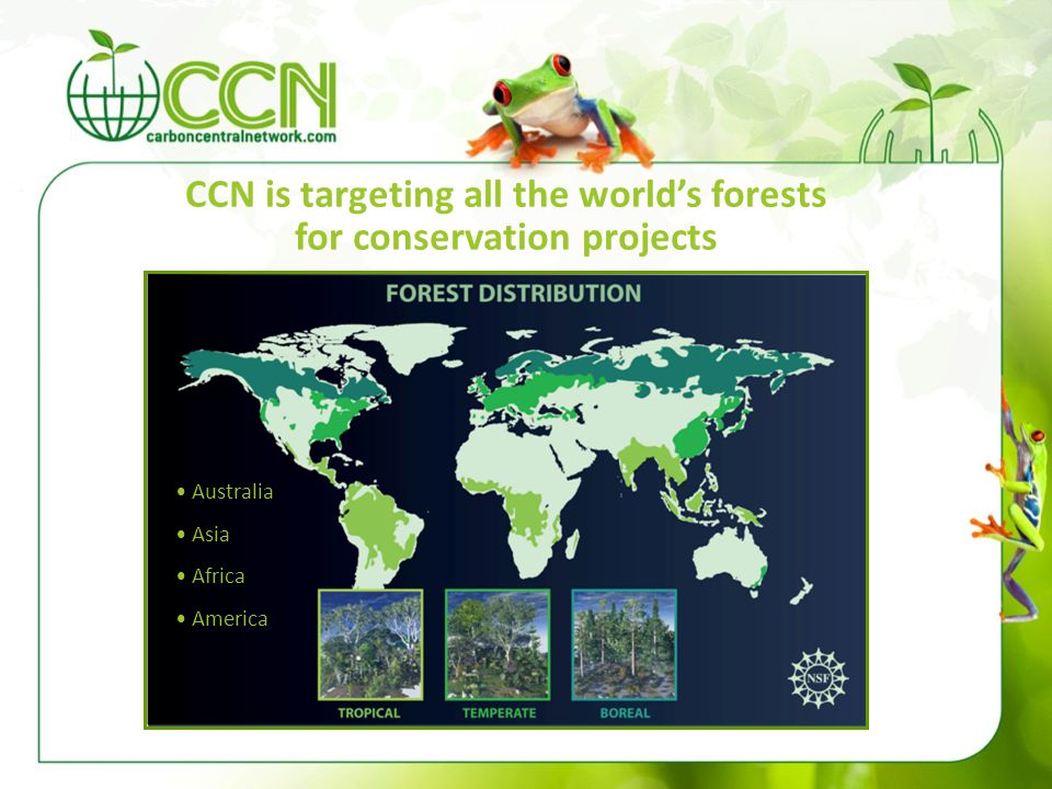 CCN is targeting all the world's forests for conservation projects Australia Asia Africa America