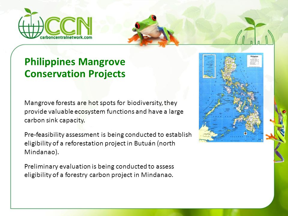 Mangrove forests are hot spots for biodiversity, they provide valuable ecosystem functions and have a large carbon sink capacity. Pre-feasibility asse