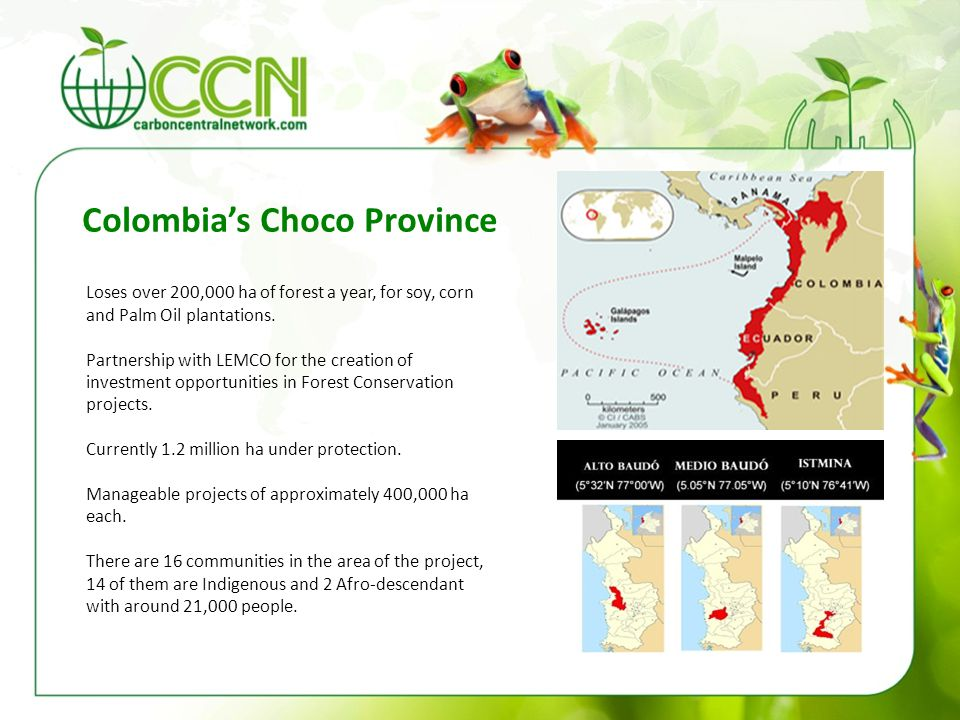 Colombia's Choco Province Loses over 200,000 ha of forest a year, for soy, corn and Palm Oil plantations. Partnership with LEMCO for the creation of i