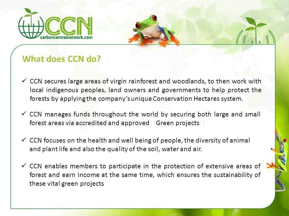 What does CCN do? CCN manages funds throughout the world by securing both large and small forest areas via accredited and approved Green projects CCN