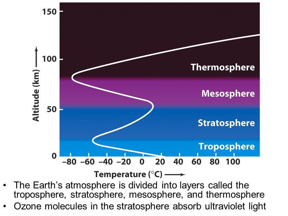 The Earth's atmosphere is divided into layers called the troposphere, stratosphere, mesosphere, and thermosphere Ozone molecules in the stratosphere absorb ultraviolet light