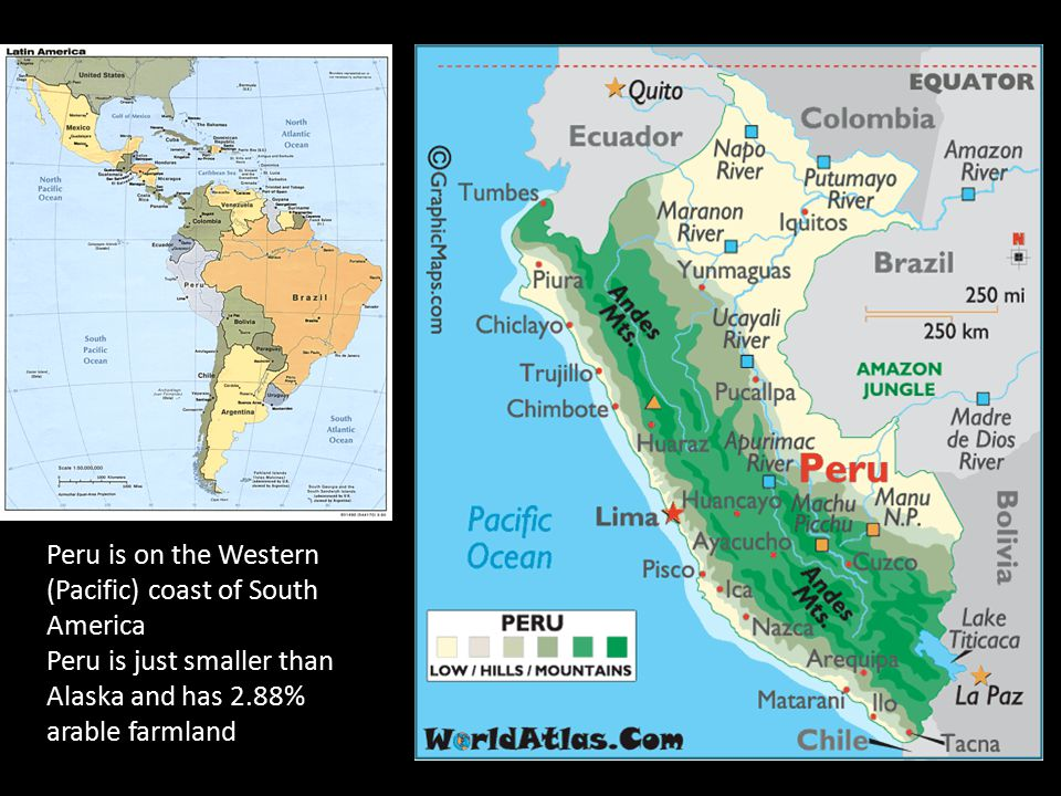 Peru is on the Western (Pacific) coast of South America Peru is just smaller than Alaska and has 2.88% arable farmland