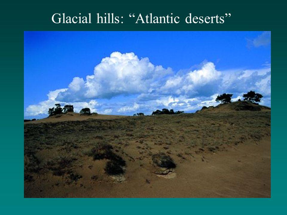 """Glacial hills: """"Atlantic deserts"""""""