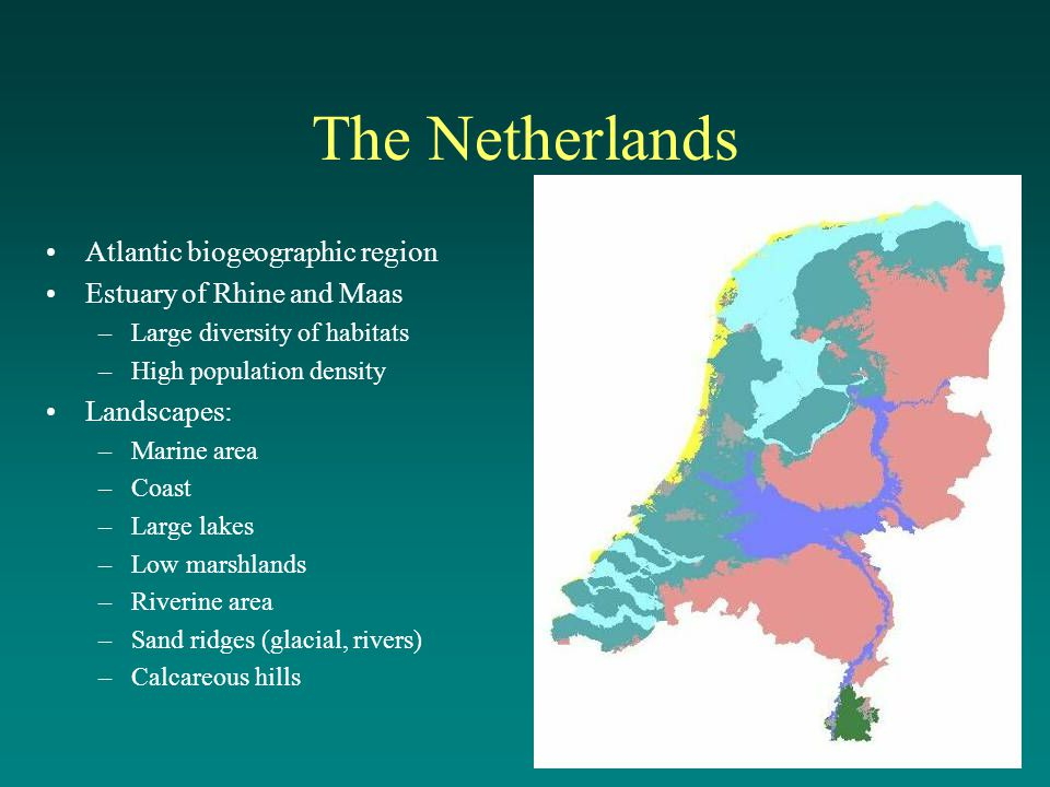 The Netherlands Atlantic biogeographic region Estuary of Rhine and Maas –Large diversity of habitats –High population density Landscapes: –Marine area –Coast –Large lakes –Low marshlands –Riverine area –Sand ridges (glacial, rivers) –Calcareous hills