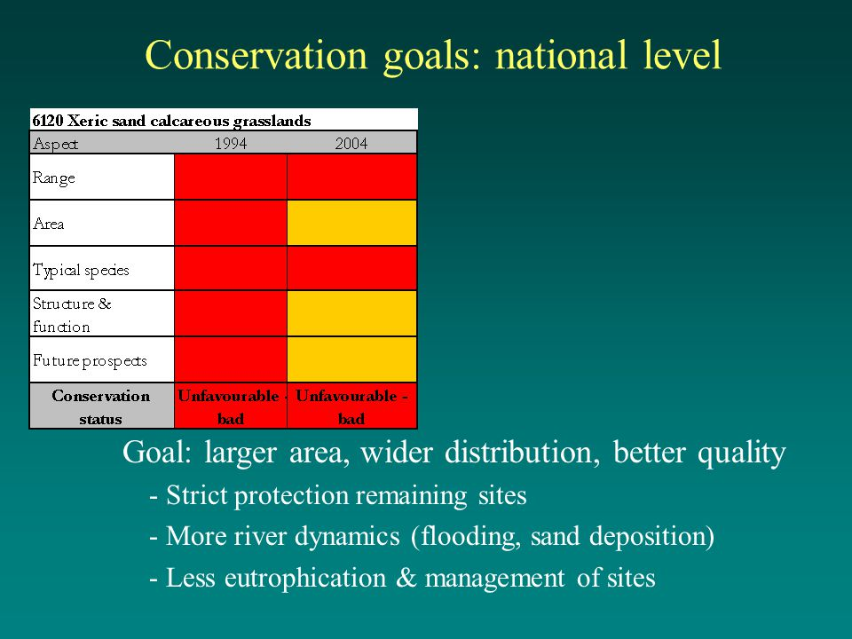 Conservation goals: national level Goal: larger area, wider distribution, better quality - Strict protection remaining sites - More river dynamics (flooding, sand deposition) - Less eutrophication & management of sites