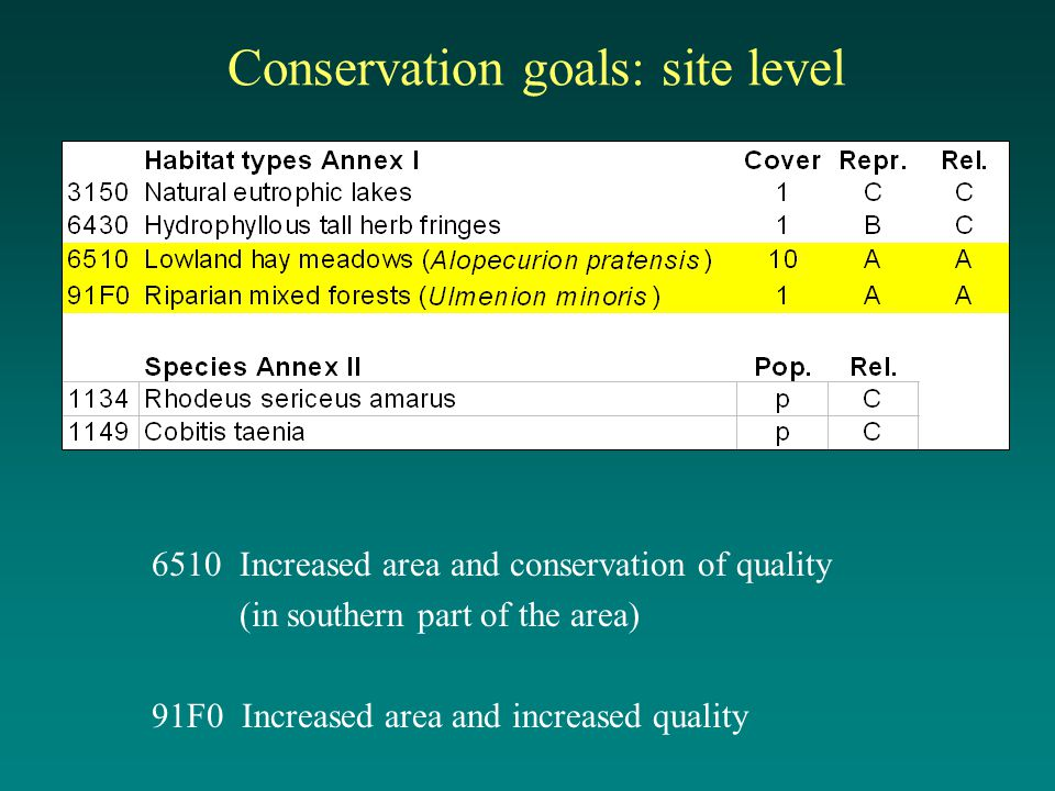 Conservation goals: site level 6510 Increased area and conservation of quality (in southern part of the area) 91F0 Increased area and increased quality