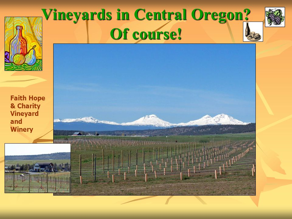 Vineyards in Central Oregon? Of course! Faith Hope & Charity Vineyard and Winery