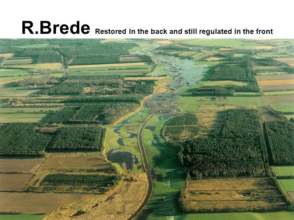 R. Brede: Before EFC = regulated