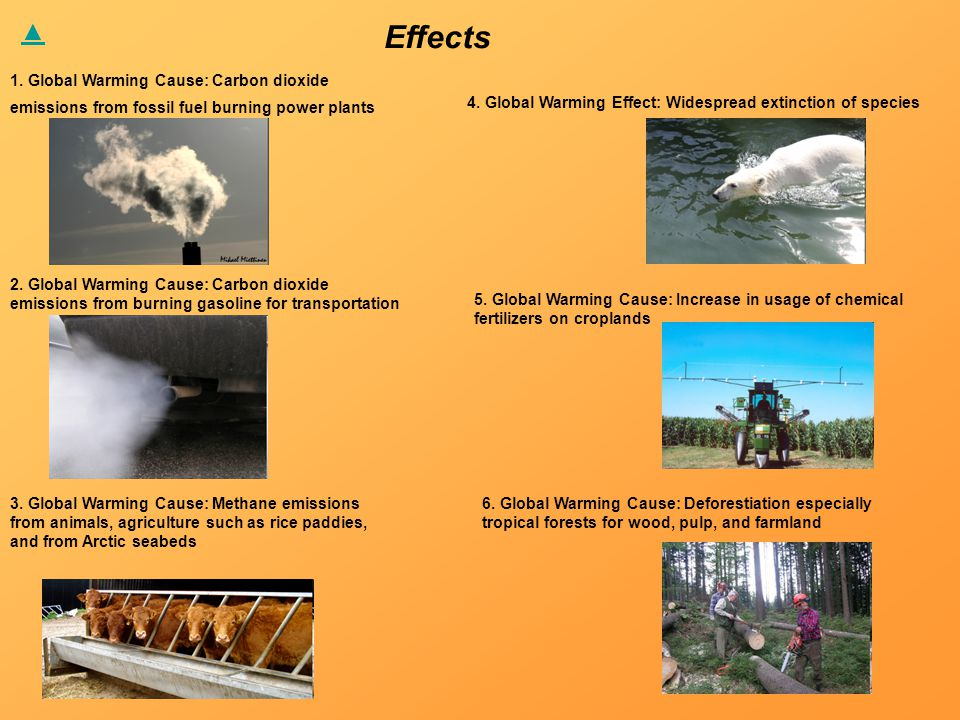 Effects 1. Global Warming Cause: Carbon dioxide emissions from fossil fuel burning power plants 2.