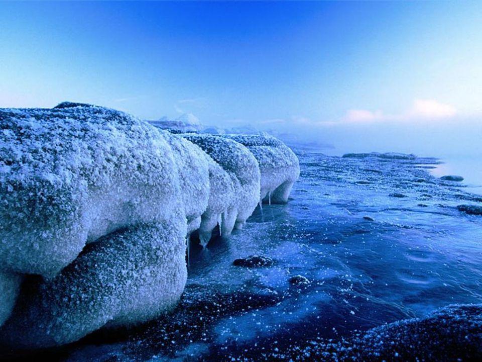 Icebergs, Cook Inlet, Alaska