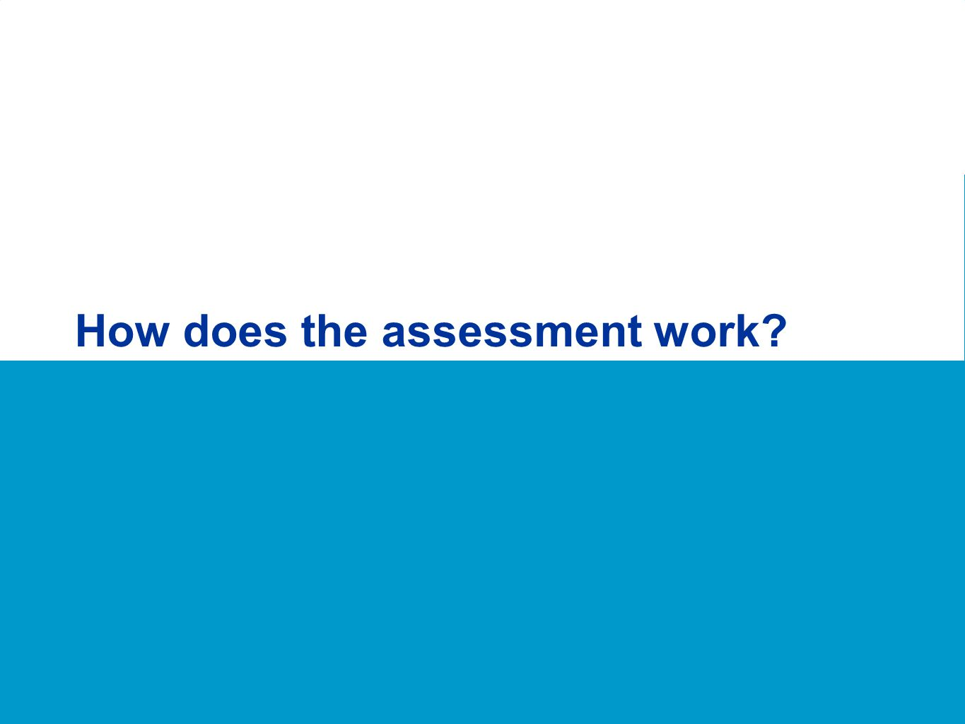 How does the assessment work?