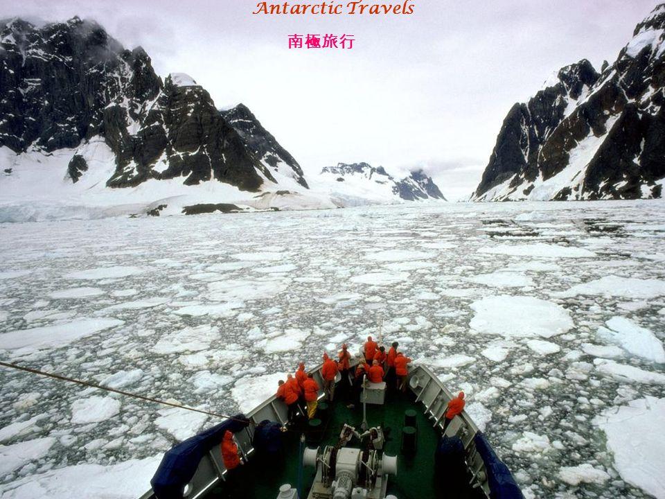 Antarctic Travels 南極旅行