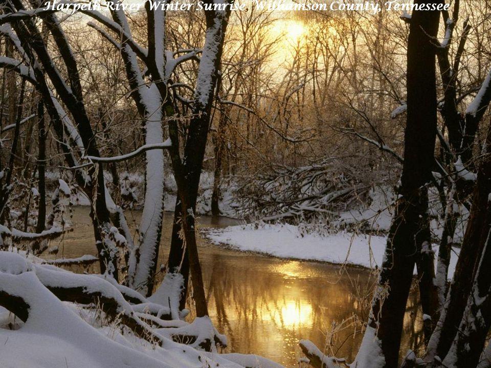 Harpeth River Winter Sunrise, Williamson County, Tennessee