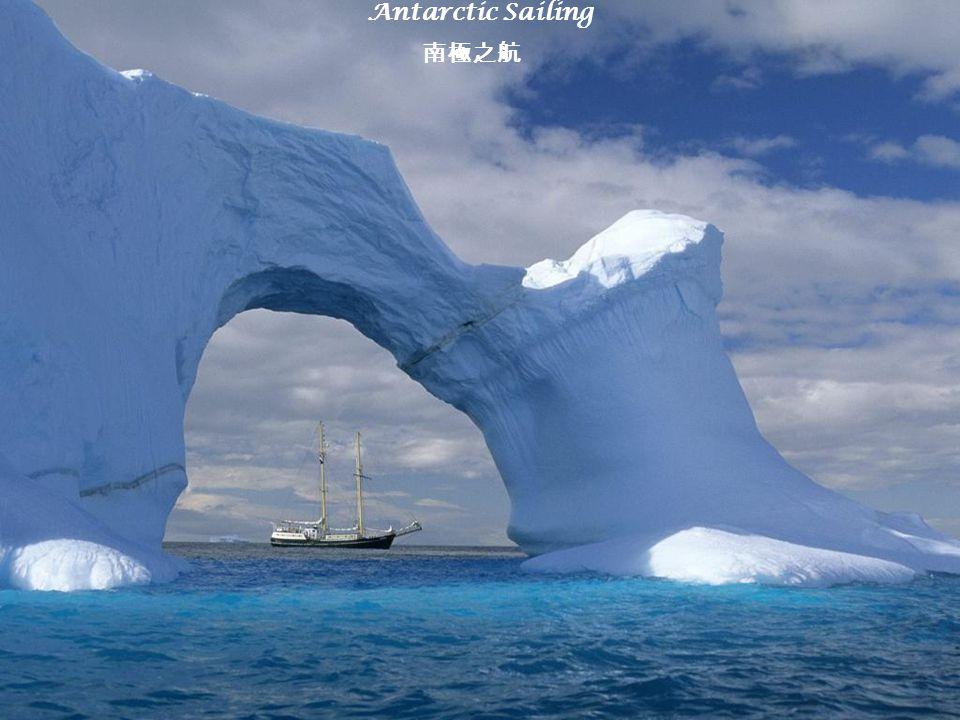 Antarctic Sailing 南極之航
