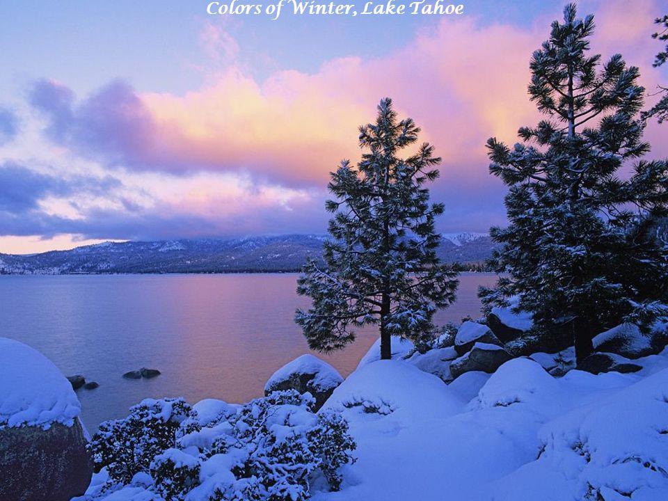 Colors of Winter, Lake Tahoe