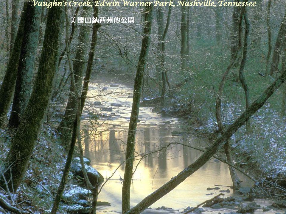 Vaughn s Creek, Edwin Warner Park, Nashville, Tennessee 美國田納西州的公園