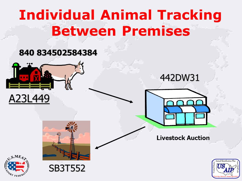 18 Individual Animal Tracking Between Premises 840 834502584384 A23L449 442DW31 Livestock Auction SB3T552