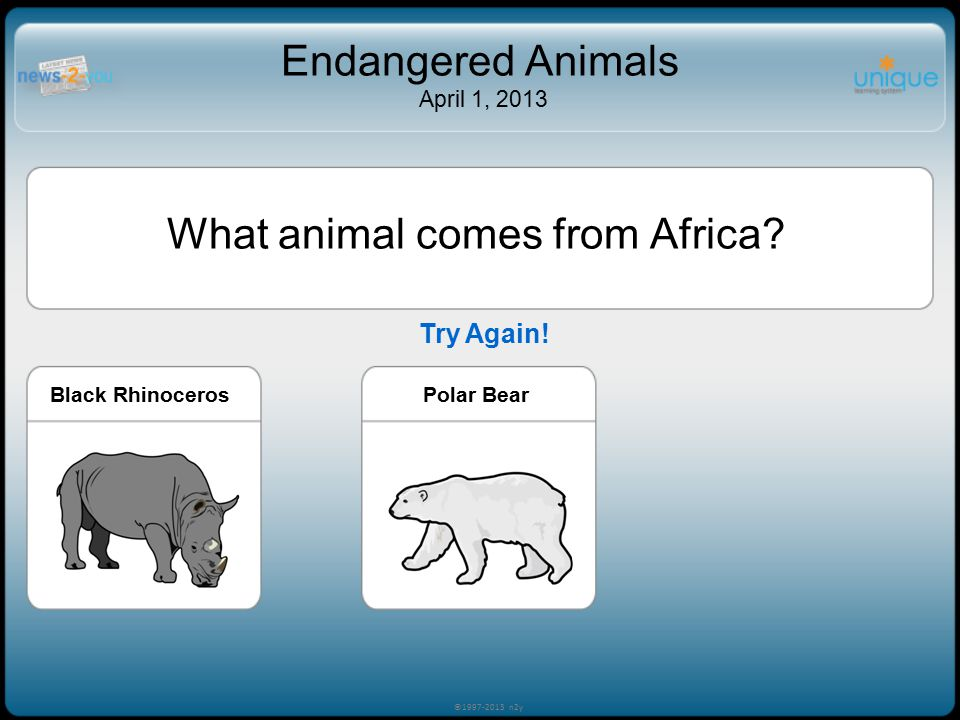 Try Again! ©1997-2013 n2y Endangered Animals April 1, 2013 What animal comes from Africa? Black RhinocerosEmperor Penguin