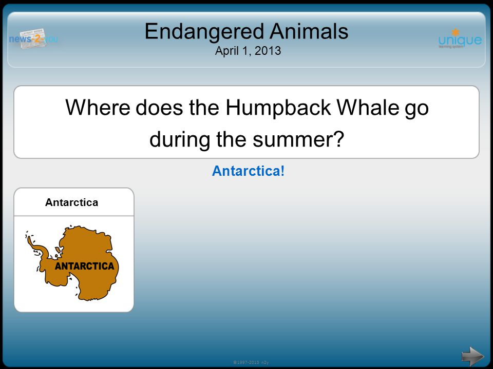 Try Again! ©1997-2013 n2y Endangered Animals April 1, 2013 Where does the Humpback Whale go during the summer? AntarcticaAsia