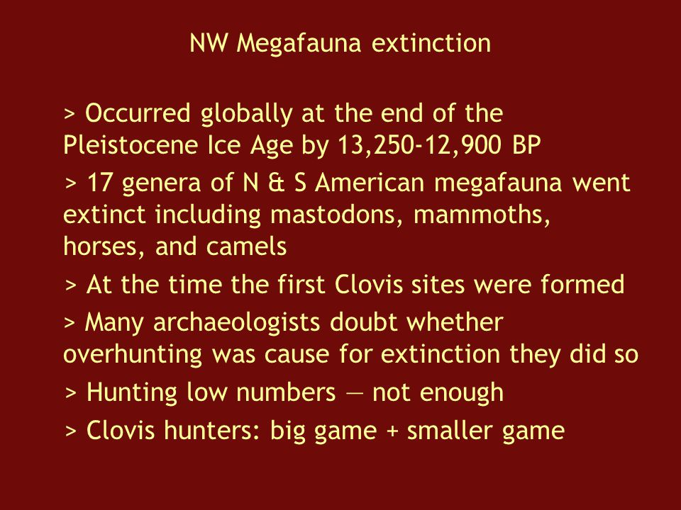 NW Megafauna extinction > Occurred globally at the end of the Pleistocene Ice Age by 13,250-12,900 BP > 17 genera of N & S American megafauna went extinct including mastodons, mammoths, horses, and camels > At the time the first Clovis sites were formed > Many archaeologists doubt whether overhunting was cause for extinction they did so > Hunting low numbers — not enough > Clovis hunters: big game + smaller game