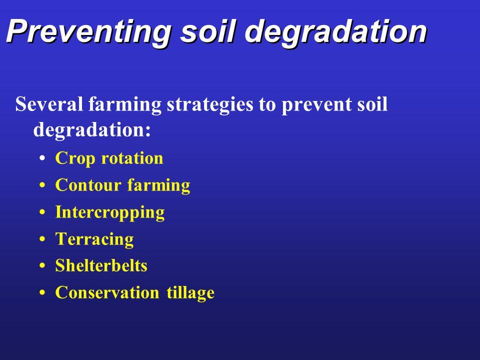 Preventing soil degradation Several farming strategies to prevent soil degradation: Crop rotation Contour farming Intercropping Terracing Shelterbelts Conservation tillage