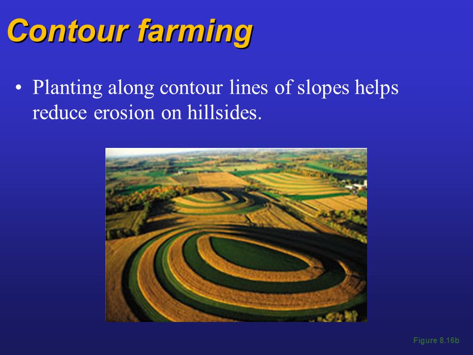 Contour farming Planting along contour lines of slopes helps reduce erosion on hillsides.