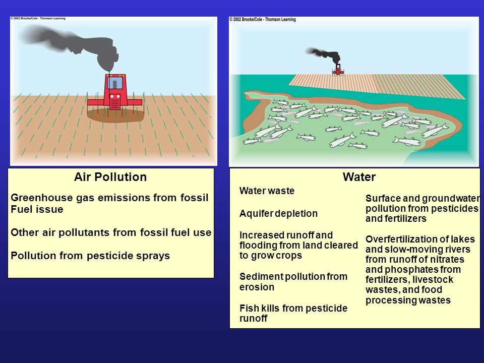 Air Pollution Greenhouse gas emissions from fossil Fuel issue Other air pollutants from fossil fuel use Pollution from pesticide sprays Water Water waste Aquifer depletion Increased runoff and flooding from land cleared to grow crops Sediment pollution from erosion Fish kills from pesticide runoff Surface and groundwater pollution from pesticides and fertilizers Overfertilization of lakes and slow-moving rivers from runoff of nitrates and phosphates from fertilizers, livestock wastes, and food processing wastes