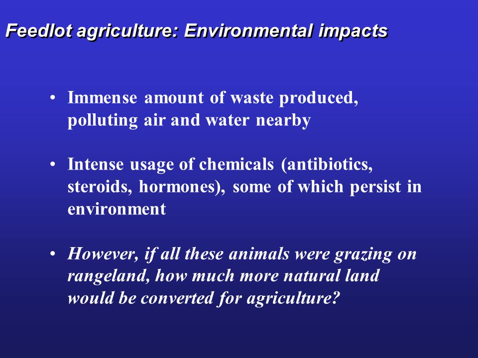 Feedlot agriculture: Environmental impacts Immense amount of waste produced, polluting air and water nearby Intense usage of chemicals (antibiotics, steroids, hormones), some of which persist in environment However, if all these animals were grazing on rangeland, how much more natural land would be converted for agriculture?