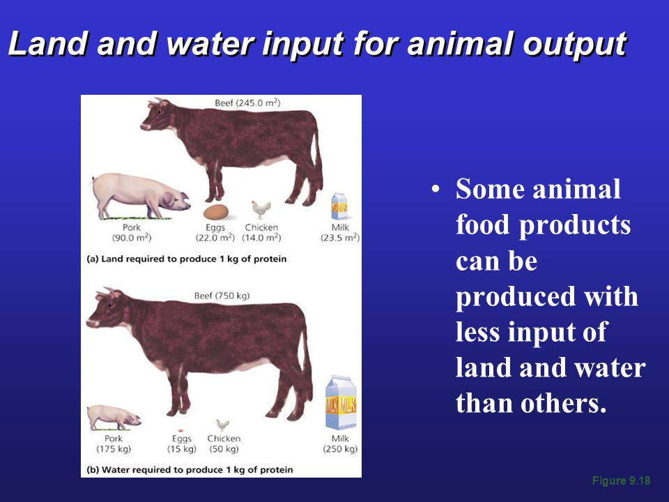 Land and water input for animal output Some animal food products can be produced with less input of land and water than others.