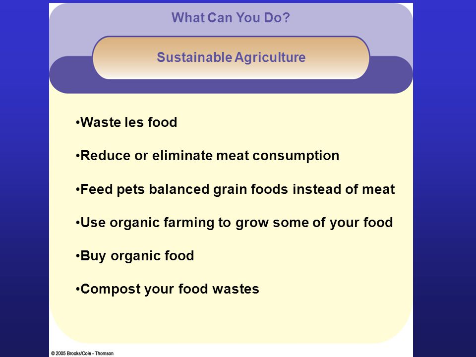Waste les food Reduce or eliminate meat consumption Feed pets balanced grain foods instead of meat Use organic farming to grow some of your food Buy organic food Compost your food wastes What Can You Do.