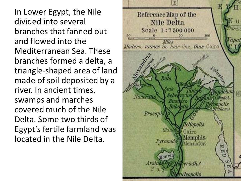 In Lower Egypt, the Nile divided into several branches that fanned out and flowed into the Mediterranean Sea. These branches formed a delta, a triangl