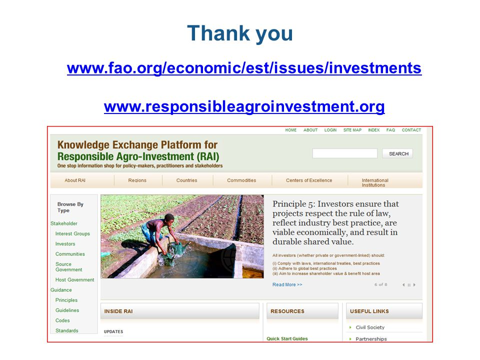 Thank you www.fao.org/economic/est/issues/investments www.responsibleagroinvestment.org