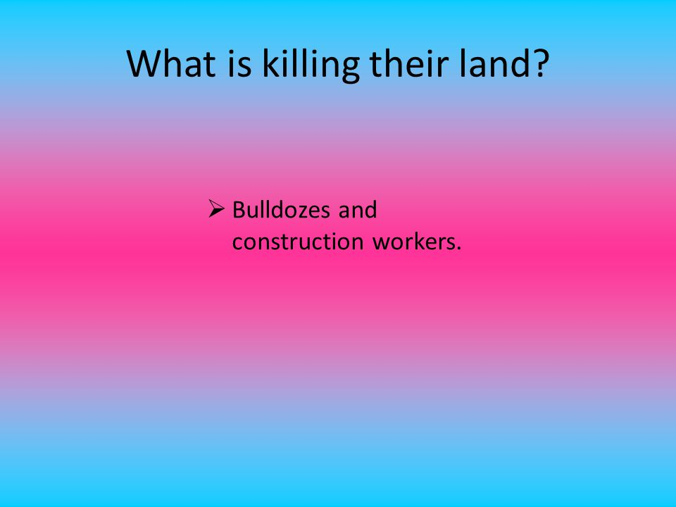 What is killing their land?  Bulldozes and construction workers.