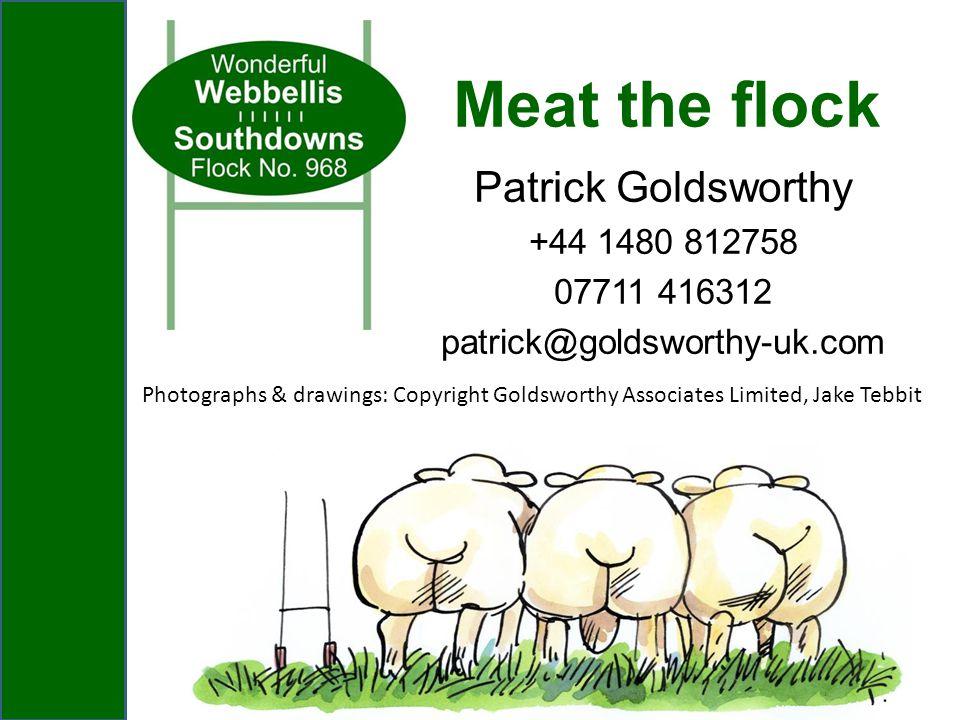 Patrick Goldsworthy +44 1480 812758 07711 416312 patrick@goldsworthy-uk.com Meat the flock Photographs & drawings: Copyright Goldsworthy Associates Li