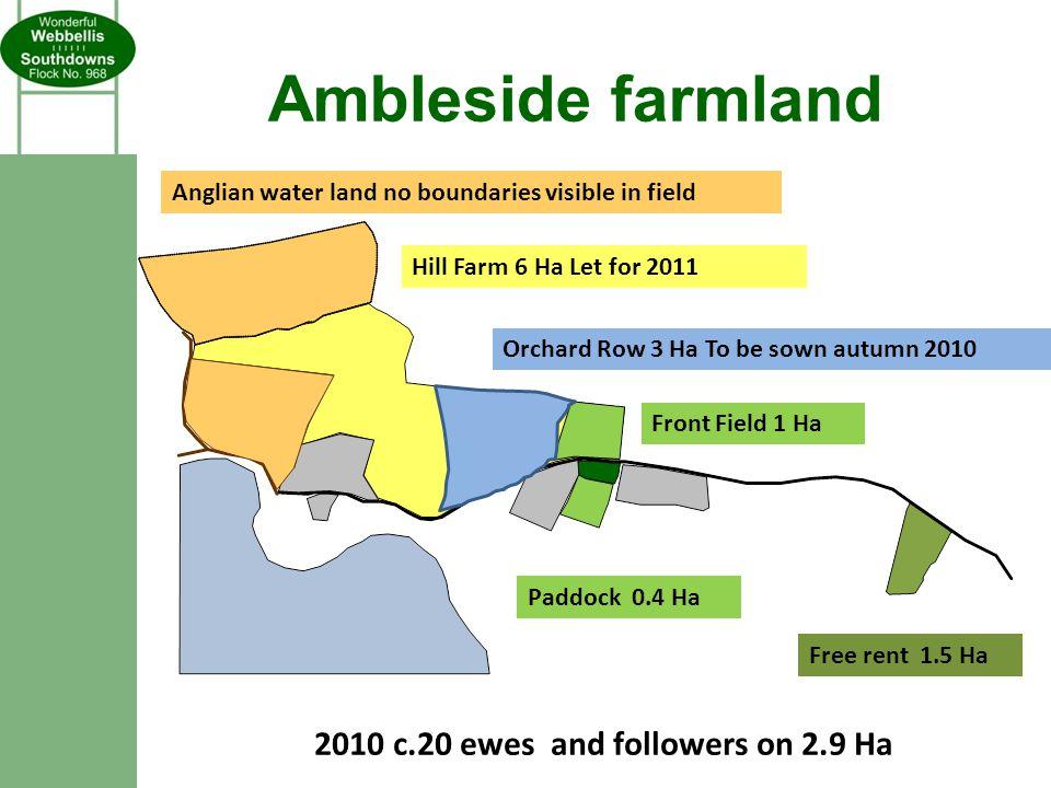 Ambleside farmland Free rent 1.5 Ha Paddock 0.4 Ha Front Field 1 Ha Hill Farm 6 Ha Let for 2011 Orchard Row 3 Ha To be sown autumn 2010 Anglian water