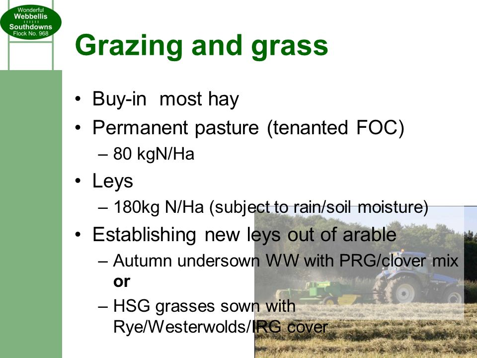 Grazing and grass Buy-in most hay Permanent pasture (tenanted FOC) –80 kgN/Ha Leys –180kg N/Ha (subject to rain/soil moisture) Establishing new leys out of arable –Autumn undersown WW with PRG/clover mix or –HSG grasses sown with Rye/Westerwolds/IRG cover