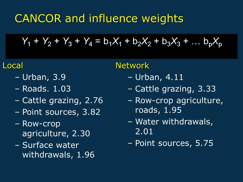 CANCOR and influence weights Y 1 + Y 2 + Y 3 + Y 4 = b 1 X 1 + b 2 X 2 + b 3 X 3 + … b p X p Local –Urban, 3.9 –Roads.