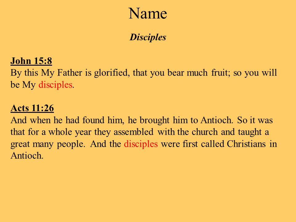 Name Disciples John 15:8 By this My Father is glorified, that you bear much fruit; so you will be My disciples.