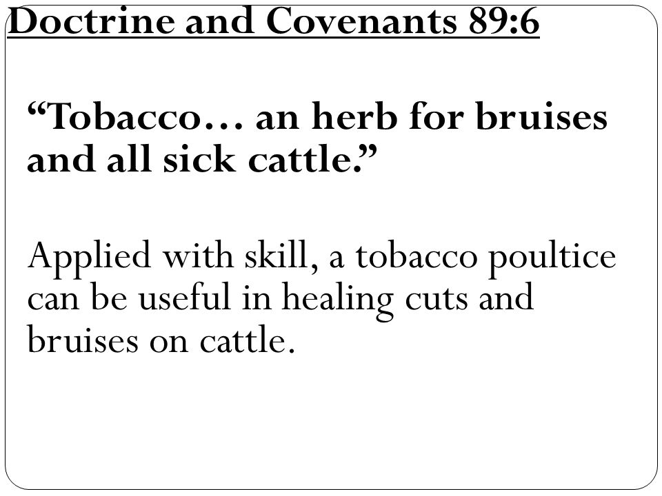 Doctrine and Covenants 89:6 Tobacco… an herb for bruises and all sick cattle. Applied with skill, a tobacco poultice can be useful in healing cuts and bruises on cattle.