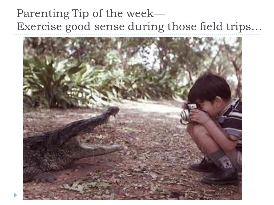 Parenting Tip of the week— Exercise good sense during those field trips…