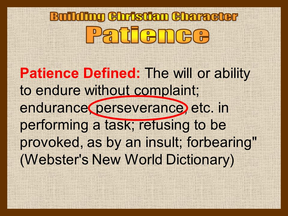 Patience Defined: The will or ability to endure without complaint; endurance, perseverance, etc. in performing a task; refusing to be provoked, as by