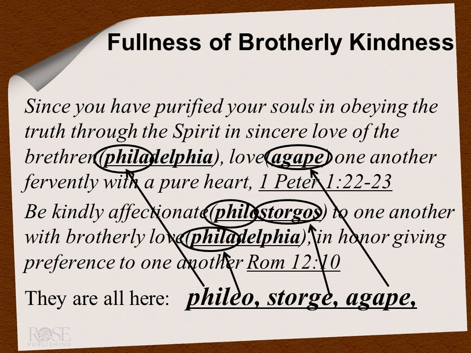 Since you have purified your souls in obeying the truth through the Spirit in sincere love of the brethren(philadelphia), love(agape) one another fervently with a pure heart, 1 Peter 1:22-23 Be kindly affectionate(philostorgos) to one another with brotherly love(philadelphia), in honor giving preference to one another Rom 12:10 They are all here: phileo, storge, agape, Fullness of Brotherly Kindness