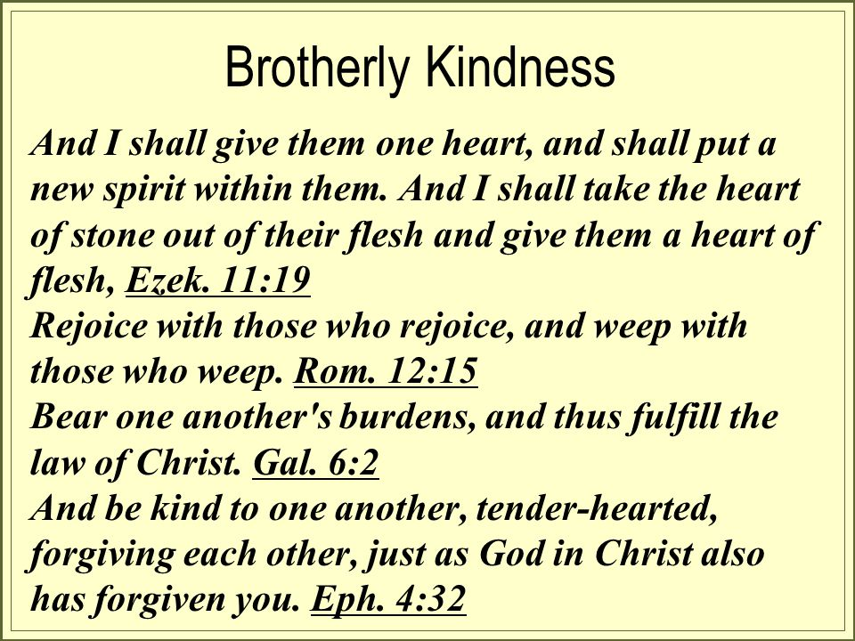 Brotherly Kindness And I shall give them one heart, and shall put a new spirit within them.