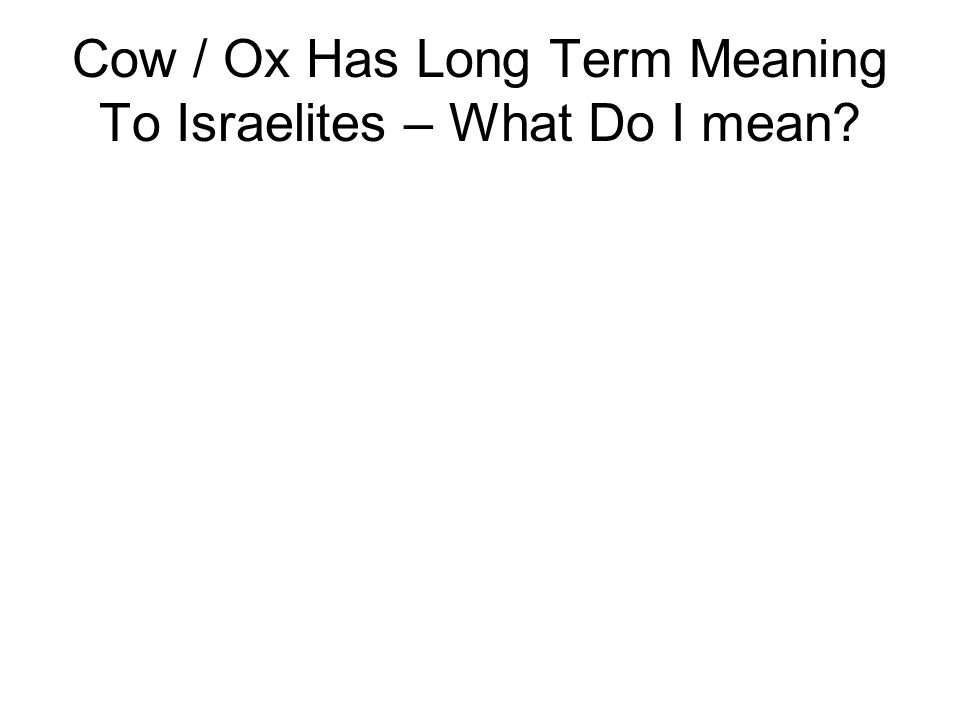 Cow / Ox Has Long Term Meaning To Israelites – What Do I mean?