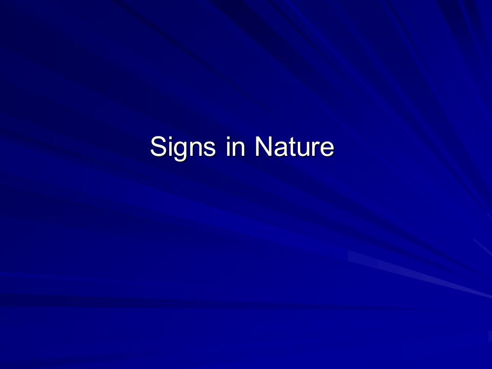 Signs in Nature